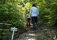 温泉神社への散歩道