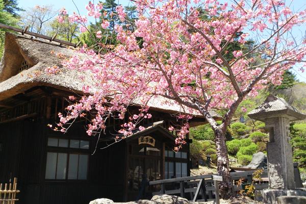 春の玉子湯湯小屋外観